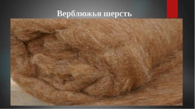 Верблюда шерсть